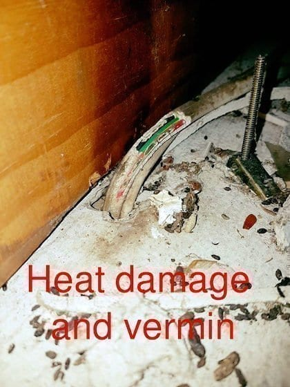 electrical wiring damage from vermin
